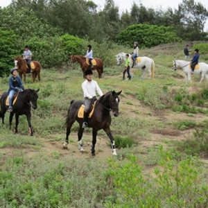 Community event / horseback ridding along the beach this wee...