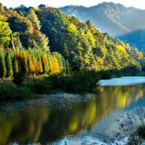 江津四面山舉行極限挑戰賽打造原生態體育旅遊體驗 - 臺灣新浪網