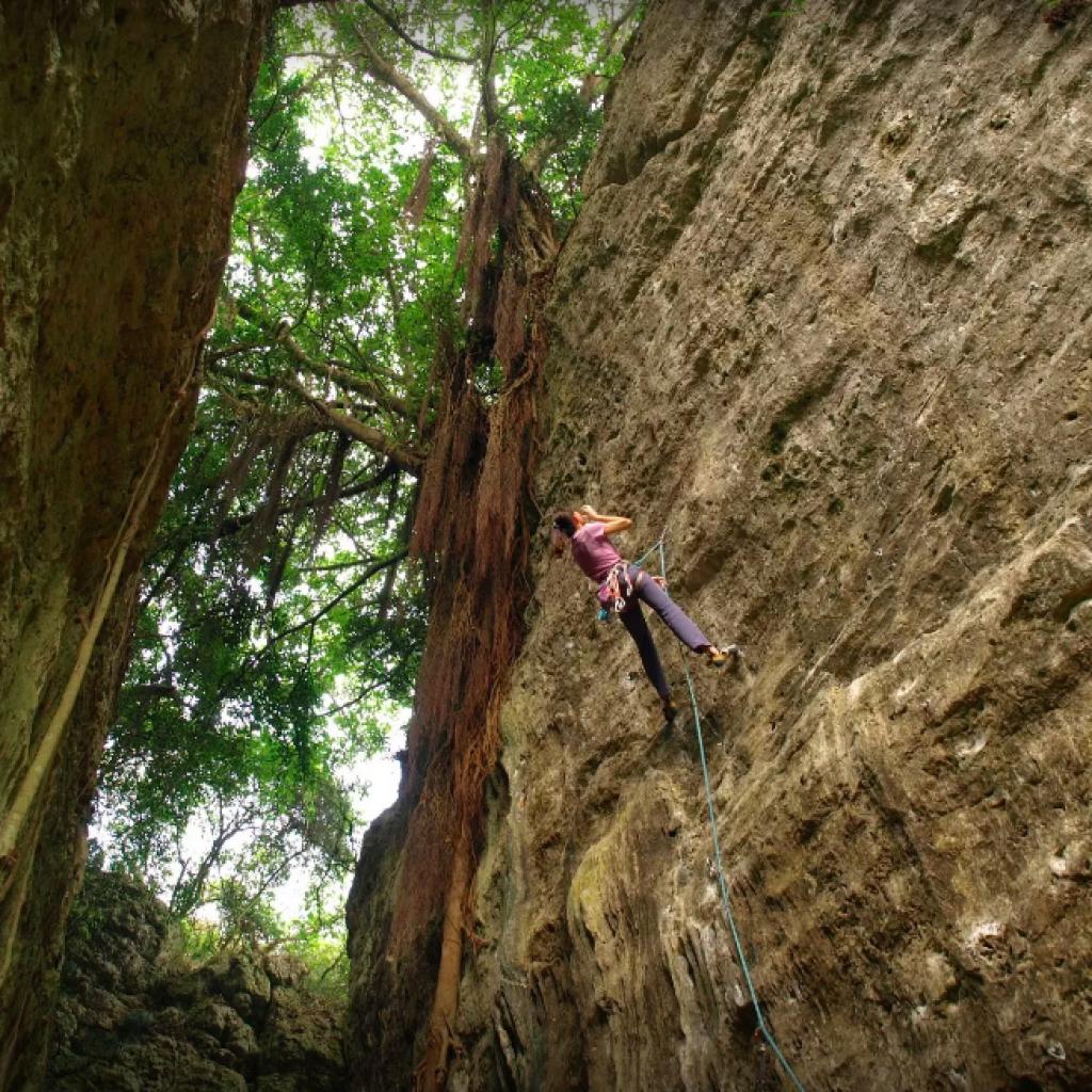 攀岩 天然岩場 高雄 |柴山岩場