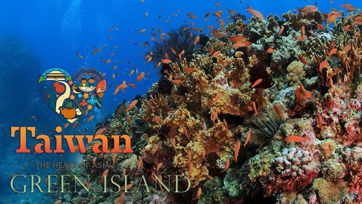 Community Video /diving/ Under the Water of east Taiwancre…
