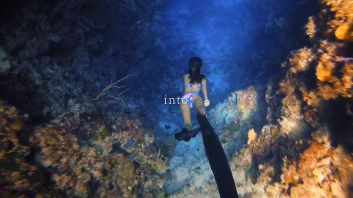 Community Video/  #freedivingCredit:  Ocean Diary_我在海邊寫日記 …