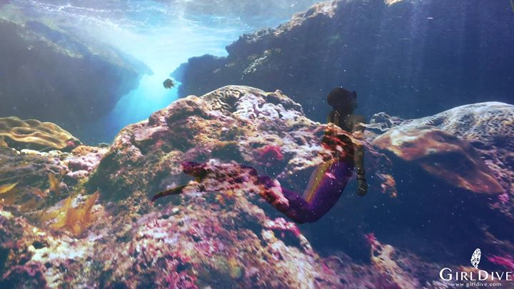 Community video/ mermain  #Freediving在今年年初接觸了潛水,開始愛上海洋,因為在海中…