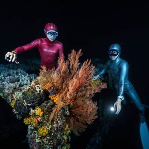 Community Video/ #diving /diver's night Taiwan   Credit:  Fr...