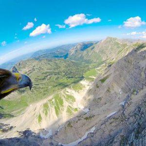 Community video / eagle vision   Credit:  haoyuaviation   #F...