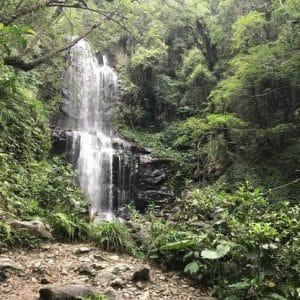 攀樹 新北市 場域 三峽雲森瀑布