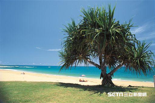 澳洲昆士蘭秘境沙灘,海灘,日光浴(圖/澳洲昆士蘭州旅遊暨活動推廣局提供)