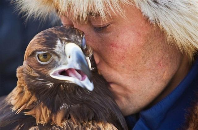哈薩克斯坦的馴鷹人,馴鷹就像放風箏