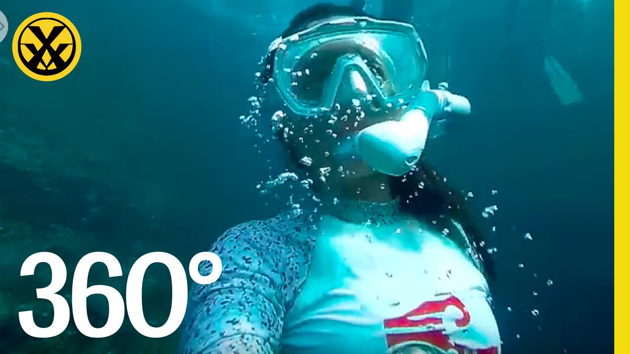 〔 極限VR 〕snorkeling at Bitou Taiwan 鼻頭角 台灣
