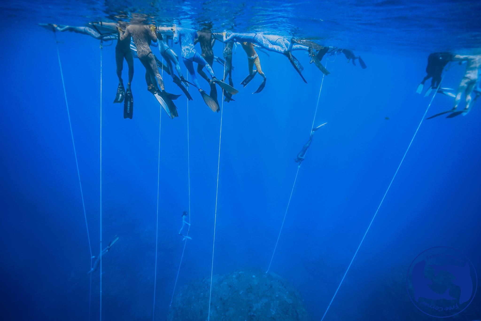 四月到六月,墾丁最棒的潛水季節到來了,湛藍的海、平靜的浪....有空一起來泡泡水吧~