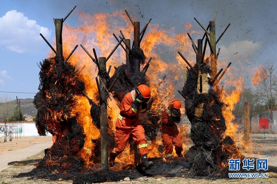 1588300723 857 帥氣!看森林消防員火