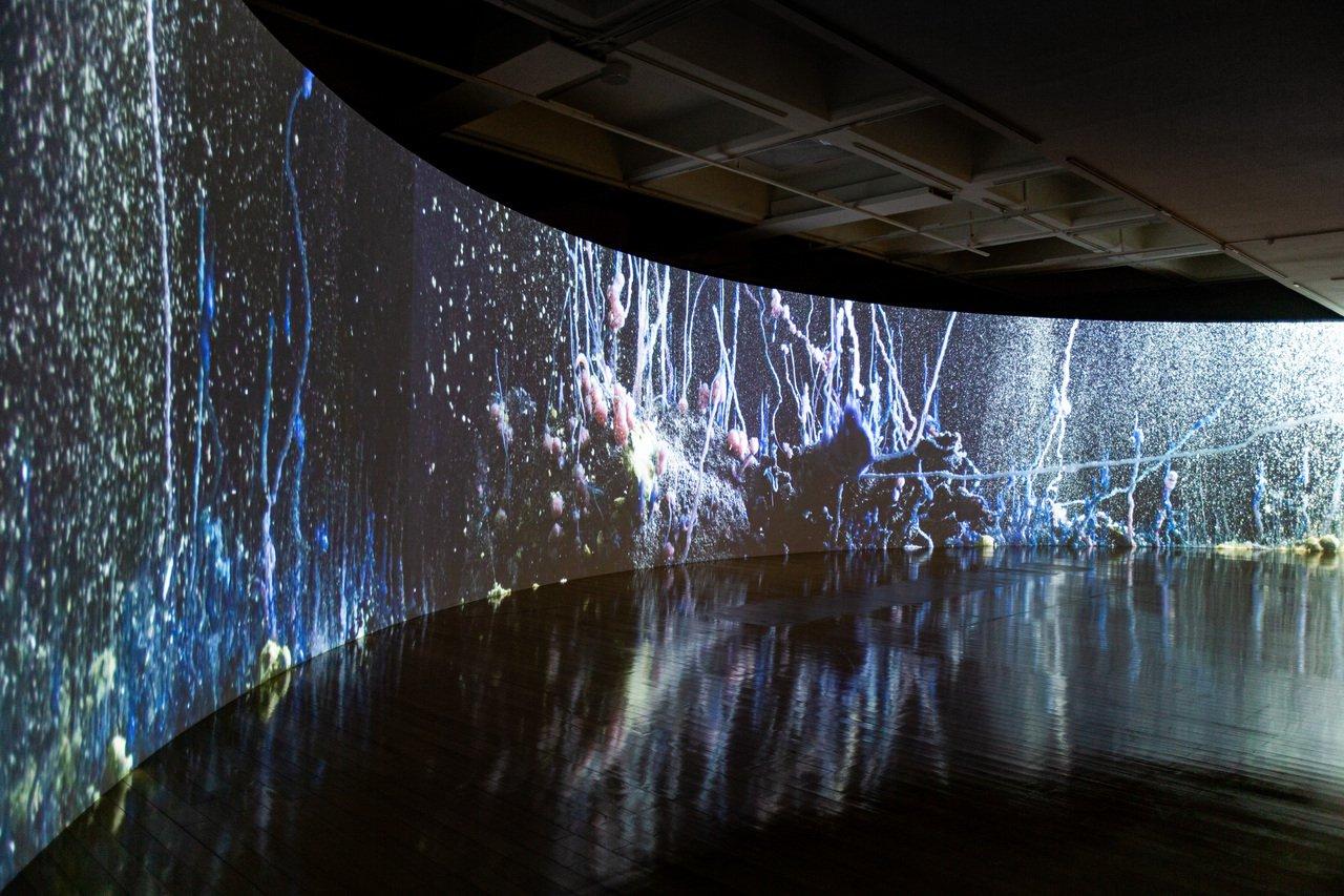 你我不住在同一星球上? 台北雙年展集結27國北美館展出 - udn.com