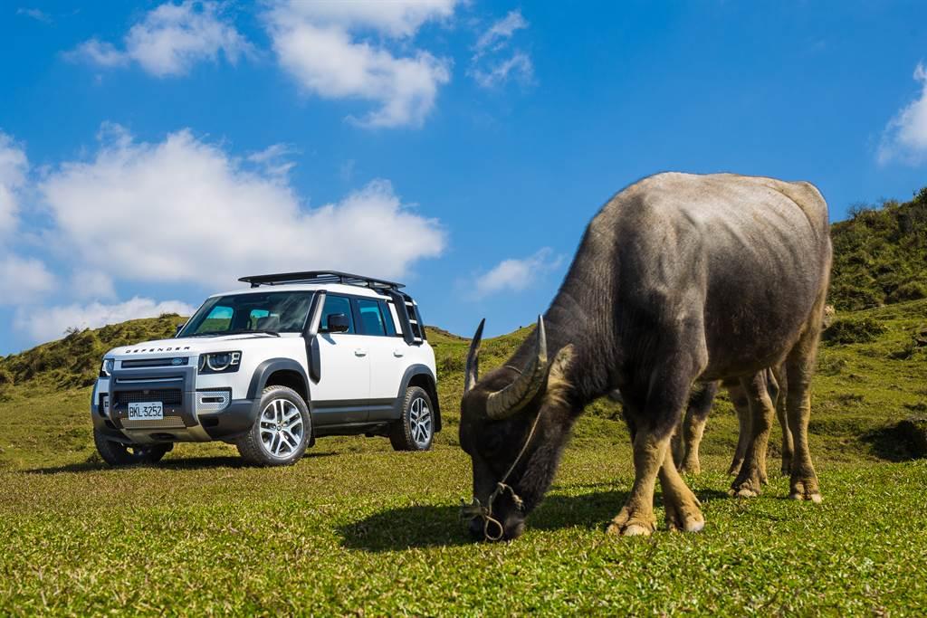 不管在越野還是公路,Land Rover Defender一樣強悍。(陳彥文攝)